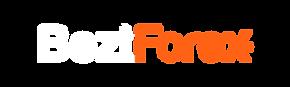 BeztForex Logo_WHITE_RGB PP 72dpi Wix Em