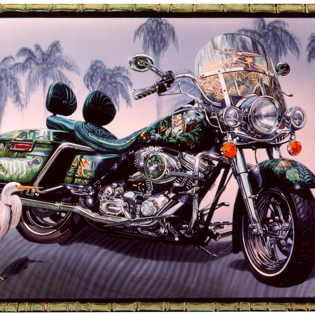 Everglades Harley.jpg