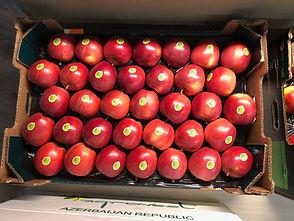 Apple Fruit Production Processing Export Import Agrarco Azerbaijan / Alma Meyvə Emal İxrac Agrarco Azərbaycan / Яблоко Фрукт Производство Переработка Экспорт Импорт Аграрко Азербайджан