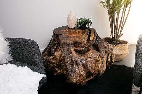 Russian Olive Wood Large Stump Coffee Table Lumberlust