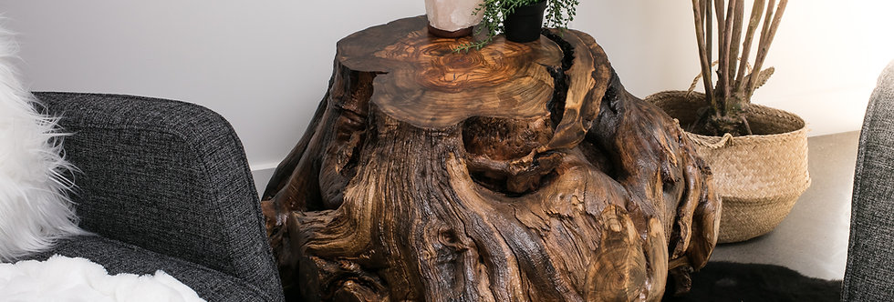 Russian Olive Wood Large Stump Coffee Table