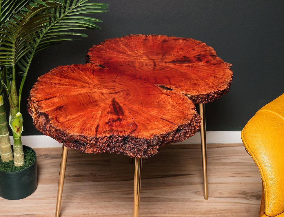 "african sumac burl live edge 27"" rustic modern transitional table"