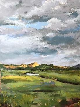 Newburyport Marsh