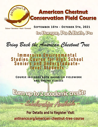Anerican Chestnut Field Course Flyer Fin