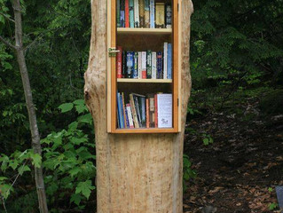 Children, Nature, Books - Here is What We Are Up To