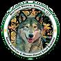 Wolfdog-Meidcal-Final-Logo-e156169432092