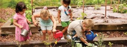 gardening with young children.jpg