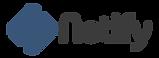 Netify Master logo.png
