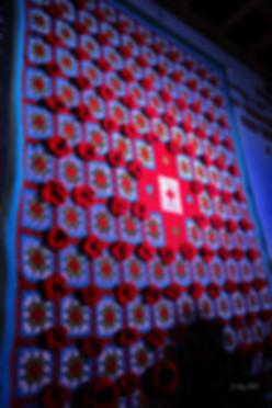 Yarn Blitzer Remembrance Poppy Room by G