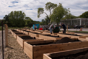 Opening the Community Gardens