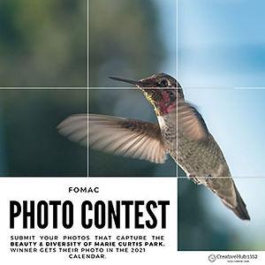 Friends of Marie Curtis Park Amateur Photo Contest!