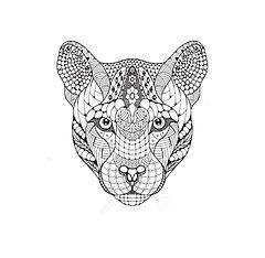 68983603-cougar-montagne-lion-tête-de-pa