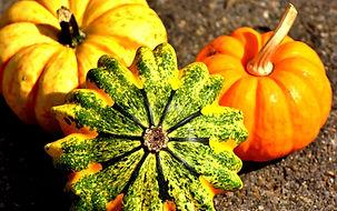 pumpkins-2204643_1920.jpg