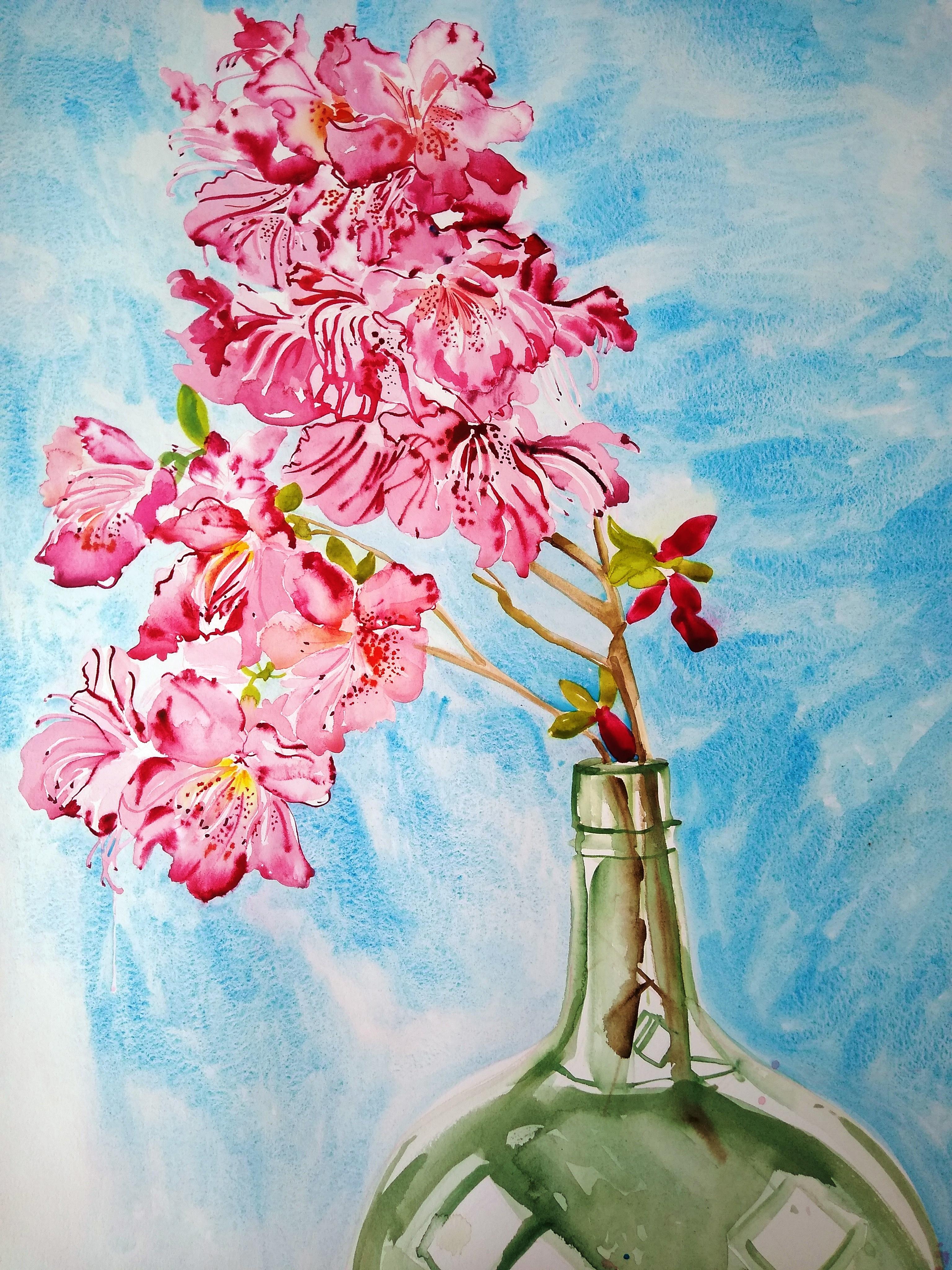 """Pink Hibiscus"""
