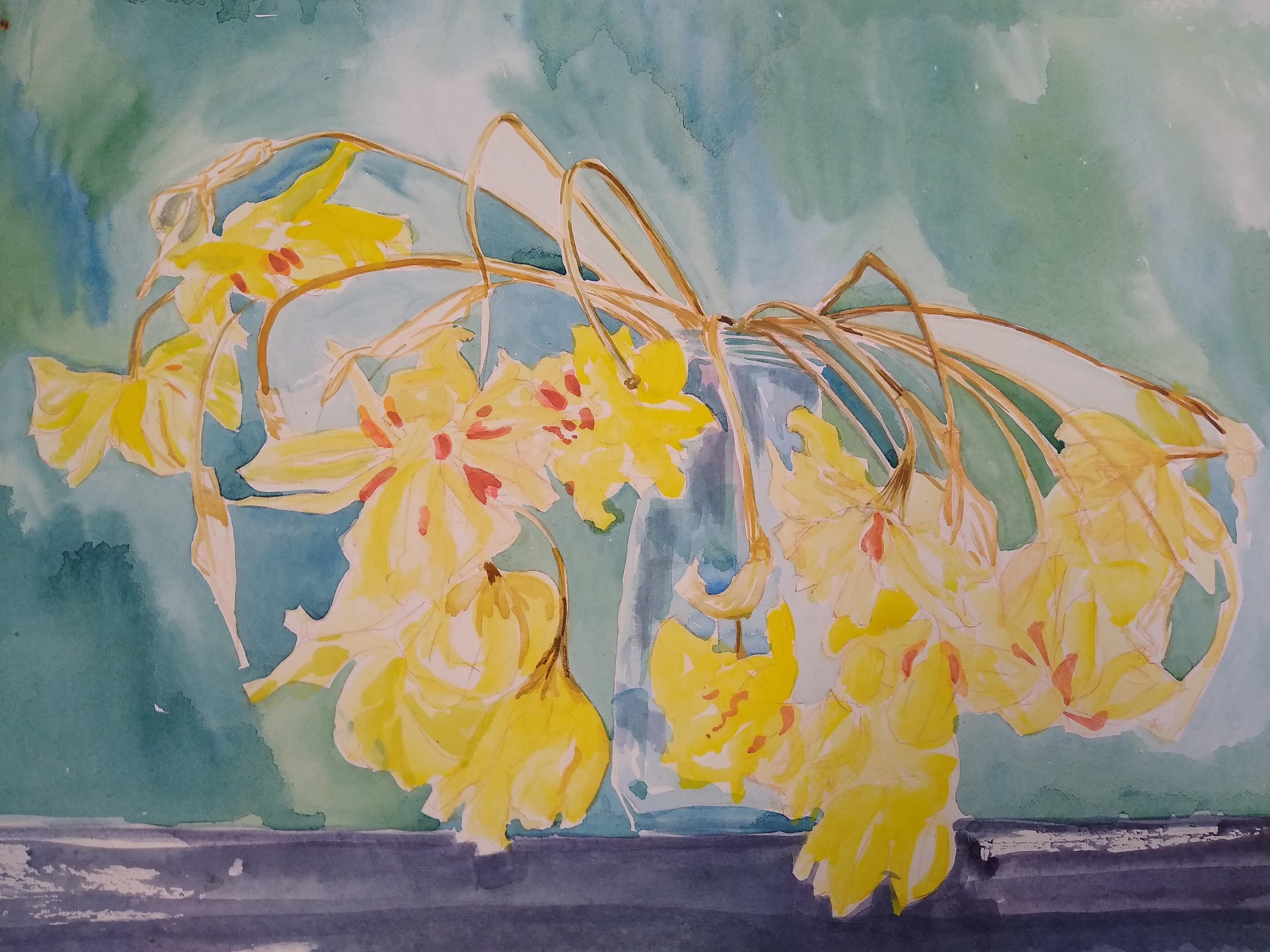 """Sara's Daffodils"""