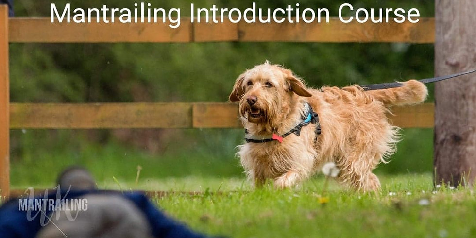 Mantrailing Introduction Course BOOKED OUT