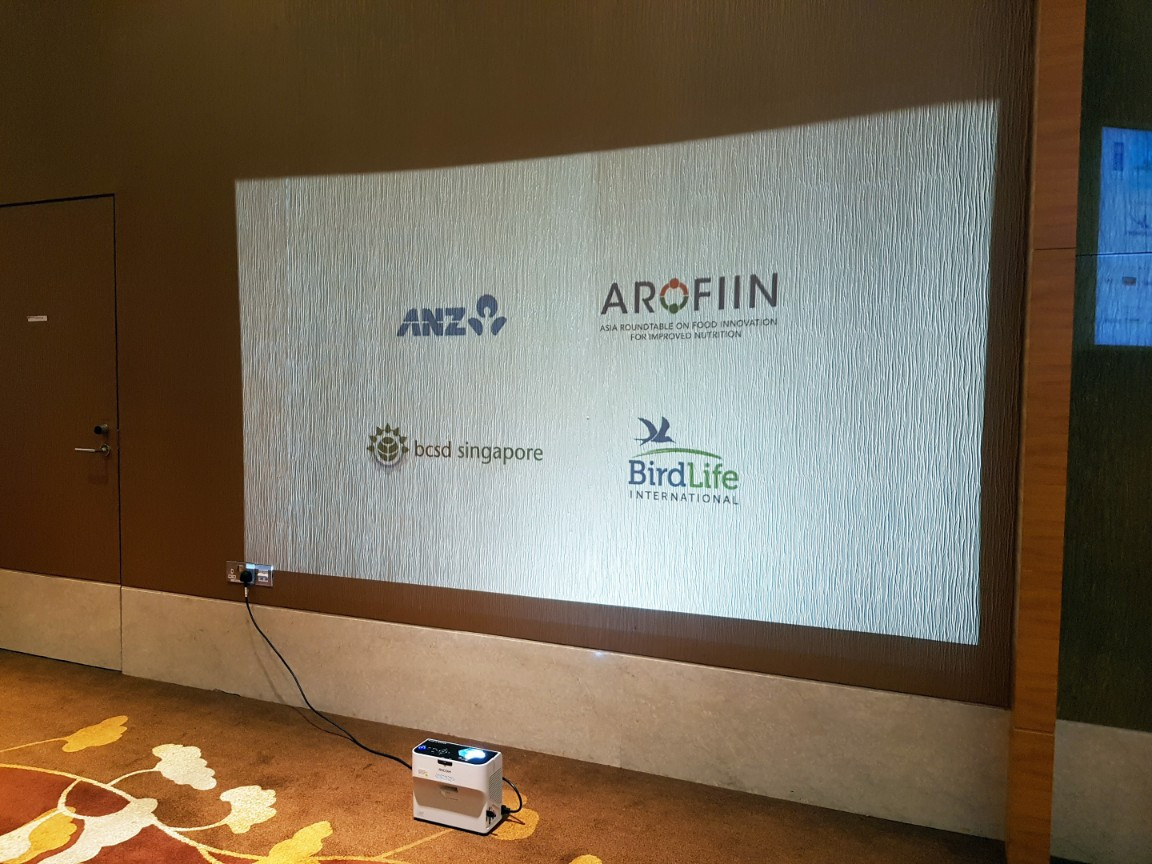 Using Projectors for sponsors in place of backdrops or printed materials at RBF 2017.