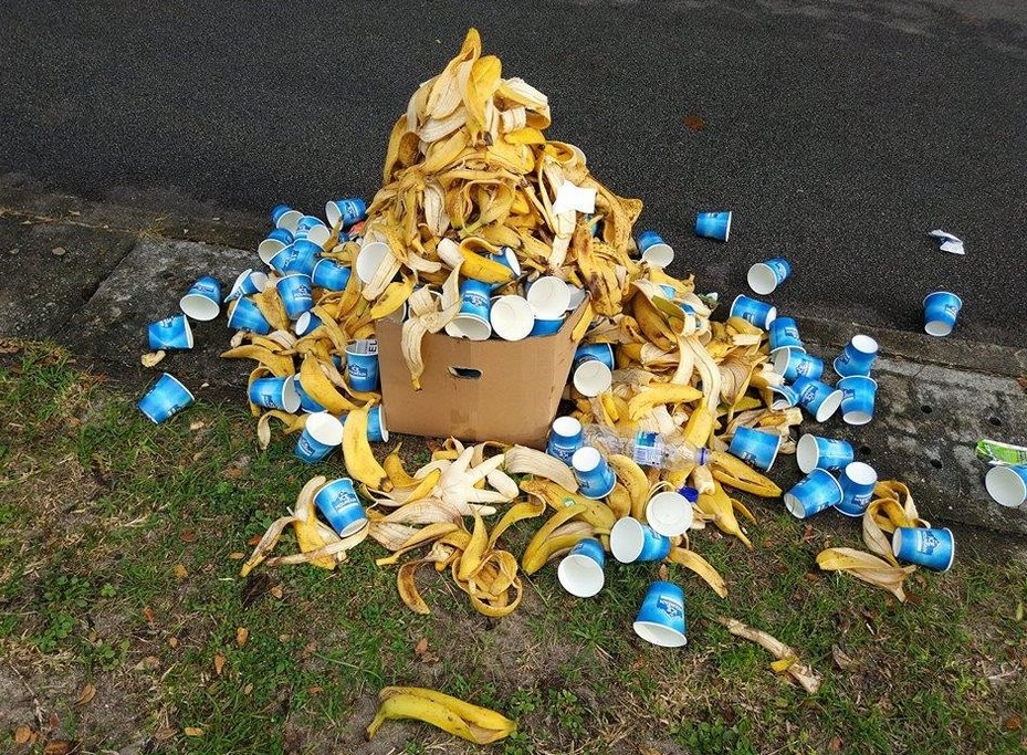 Pile of cups and peels at ECP.jpg