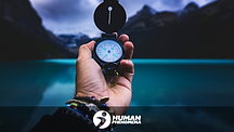 www.humanphenomena.com (5).png
