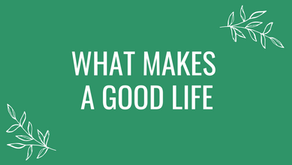 What Makes A Good Life