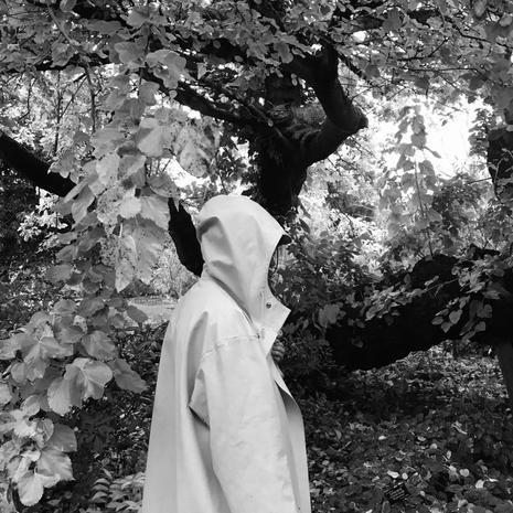 Isadora Reeves