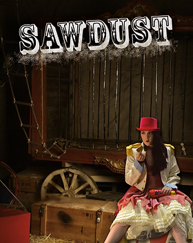 Sawdust lead image.png