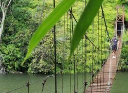 Hamaca Bridge