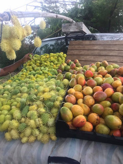 Fruit stands can be found everyewher