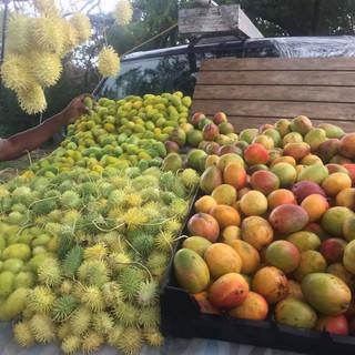 salinas fruit stand.jpg