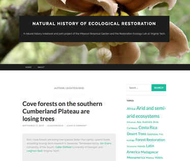 Domain Forest Publication Featured