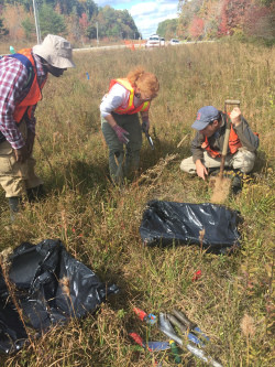 Plant Conservation Work in Tennessee