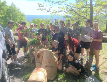 Garlic Mustard Pull with Conservation Biology Class