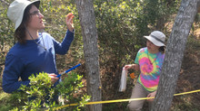 Students Present Sapelo Island Research