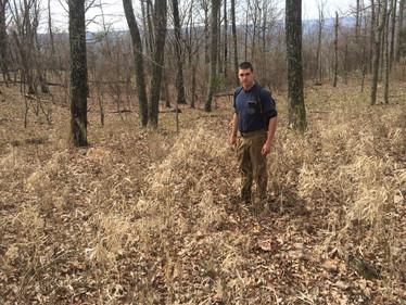 Hillcane Culm Dynamics Field Season Complete