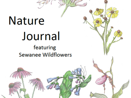 Virtual Nature Journal Available!