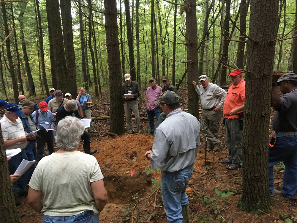 Workshop participants discuss soil profile at one of my study sites in Franklin State Forest