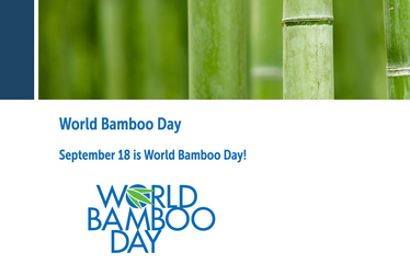 Today is World Bamboo Day!