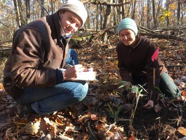 New Herbarium Fellows Announced