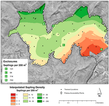 Plateau Deer Herbivory Study Published in Forests