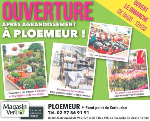 Magasin Vert à Ploemeur, une Publicité Print Precom Habitat