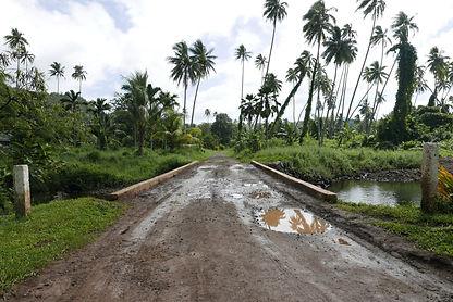 Jungle and Dirt Road in Fiji
