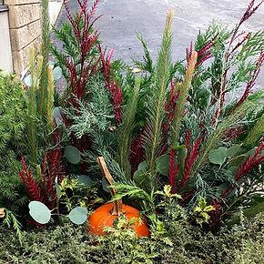 Garden Pot Oct..jpg
