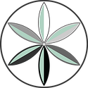 Visual Shift Logo