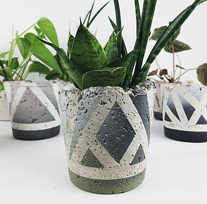 Concrete Pots - 3 of 32.jpg