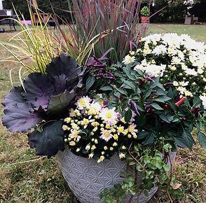 Garden Pot.jpg