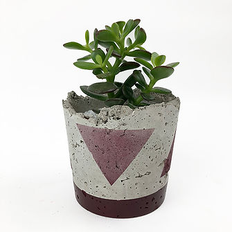 Potted Plant Art, akaVisualShift