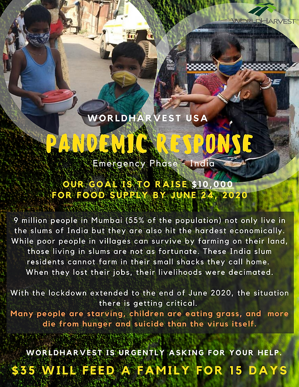 Pandemic response (3).png