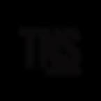 The New Standard Short Logo Blk.png