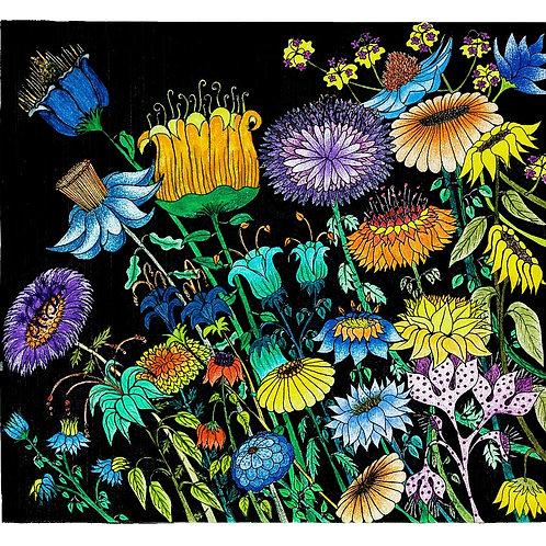 Série Natureza - Gravura - Artista Visual Ivana Cassuli