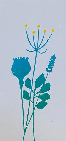 Seedhead card